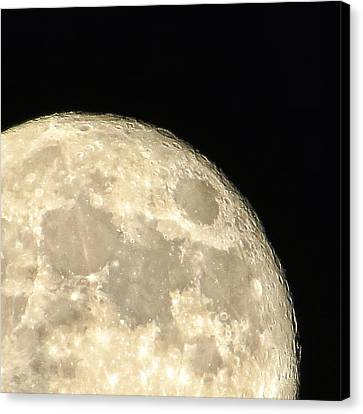 Moon Walk Canvas Print