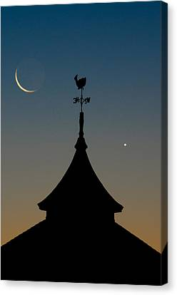Moon Whale Venus. Canvas Print by Steve Myrick