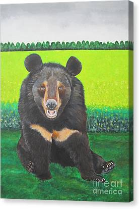 Moonbear Canvas Print by Jeepee Aero