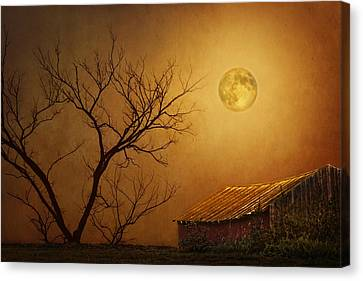 Moonglow Over Polenz Ranch Canvas Print by Nikolyn McDonald