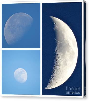Mooning You  Canvas Print