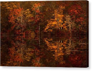 Moonlight Autumn Canvas Print by Jonathan Steele