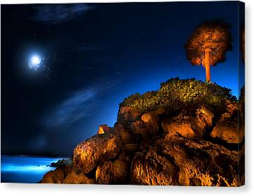 Moonlight Cove Canvas Print by Mark Andrew Thomas