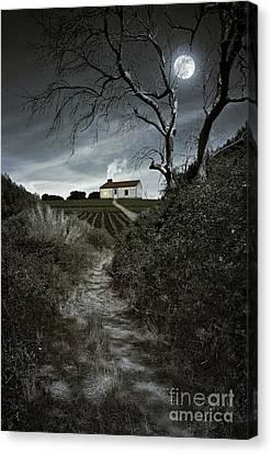 Creepy Canvas Print - Moonlight Farm by Carlos Caetano