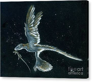 Moonlight Hunt - Microraptor Canvas Print by Julius Csotonyi