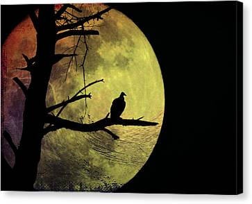 Moonlight Mile Canvas Print by Bill Cannon