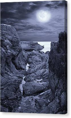Moonlight Over Rugged Seaside Rocks Canvas Print by Jane McIlroy