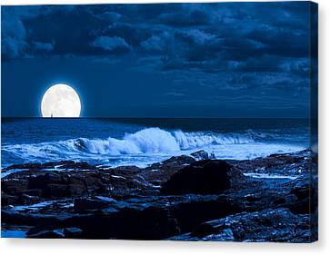 Moonlight Sail Canvas Print by Fred Larson
