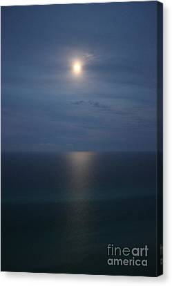 Moonlight Serenading The Waters Of Florida Canvas Print by Jennifer E Doll