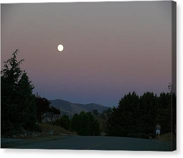 Moonlight Stroll Canvas Print by Jacquelyn Roberts