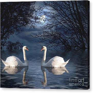 Moonlight Swim Canvas Print by Juli Scalzi
