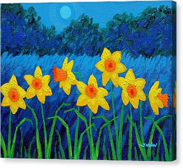 Moonlit Daffodils  Canvas Print by John  Nolan
