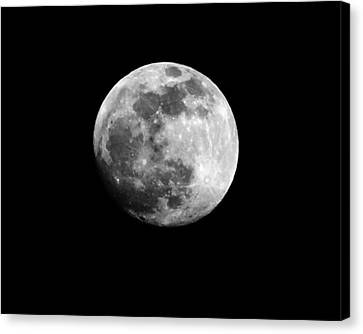 Moonlit Dreams Canvas Print by Chris Fraser