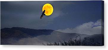 Moonlit Freedom Of Flight Canvas Print