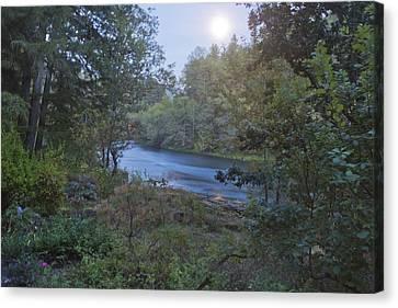 Moonlit River Canvas Print by Belinda Greb