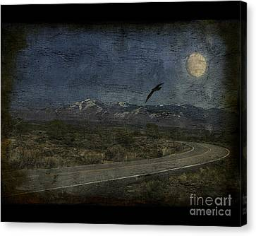 Moonlit Road Canvas Print by Jim Wright