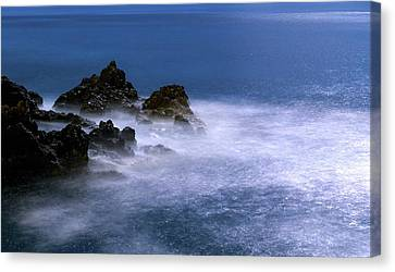 Moonlit Waves Canvas Print by Babak Tafreshi