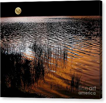 Moonrise After Sunset Canvas Print by Kaye Menner