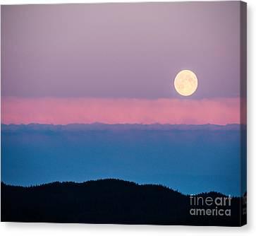 Moonrise Canvas Print by Christina Klausen