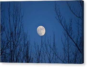 Moonrise Canvas Print by James Petersen