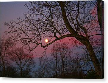 Moonrise Canvas Print by Kathryn Meyer
