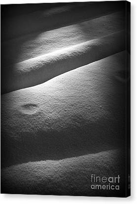 Moonscape Canvas Print by C Ray  Roth