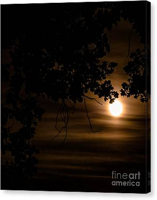 Moonscape Canvas Print by Optical Playground By MP Ray