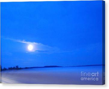 Moonscape Canvas Print