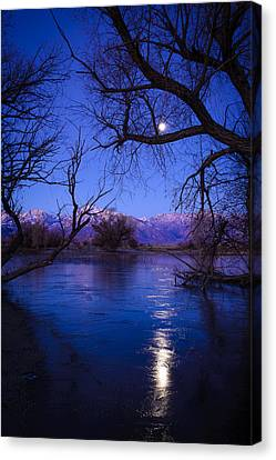 Moonset On Farmers Pond Canvas Print by Joe Doherty
