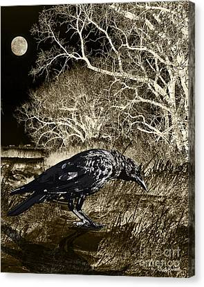 Moonshadow Canvas Print by Judy Wood
