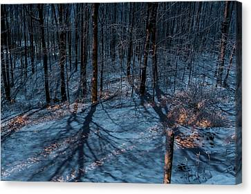 Moonshadows Canvas Print by Richard Kitchen