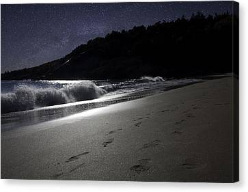 Moonshine Beach Canvas Print by Brent L Ander