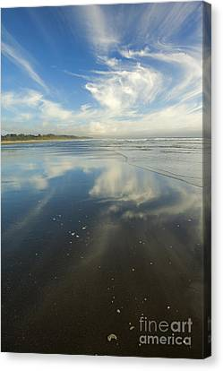 Moonstone Beach Reflections Canvas Print by Mike  Dawson