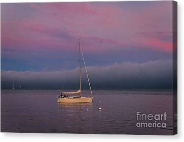 Sausalito Canvas Print - Moorings by Mitch Shindelbower