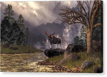 Moose In The Adirondacks Canvas Print by Daniel Eskridge