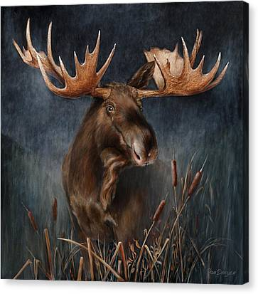 Moose In The Mist Canvas Print by Rob Dreyer