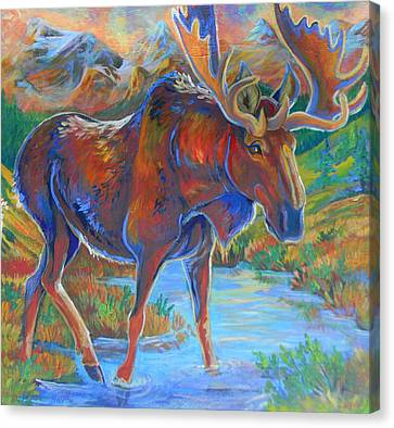 Moose Canvas Print by Jenn Cunningham