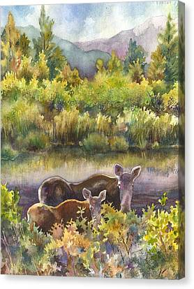 Moose Magic Canvas Print by Anne Gifford