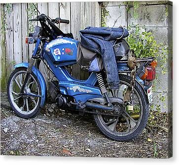 Moped Madness Canvas Print by Steve Sperry