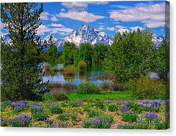 Moran From Pilgrim Creek Canvas Print by Greg Norrell