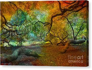 More Colors Canvas Print