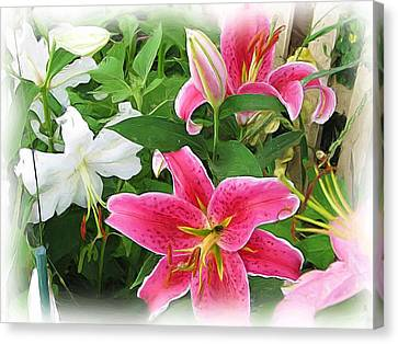 More Lilies Canvas Print by Victoria Sheldon