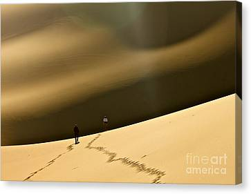 More Stars Than Sand Canvas Print