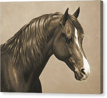Horse Lover Canvas Print - Morgan Horse Painting In Sepia by Crista Forest