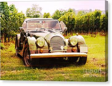 Morgan Plus 4 In Front Of Vineyard Canvas Print by Perry Van Munster