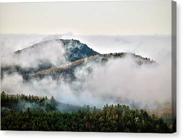 Canvas Print featuring the photograph Morning After The Storm by Allen Carroll