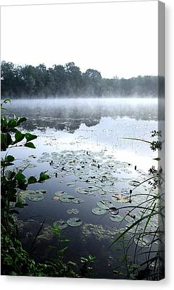 Morning At Lake Canvas Print by Willo Breisacher