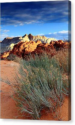 Morning At Snow Canyon State Park Canvas Print by Eric Foltz