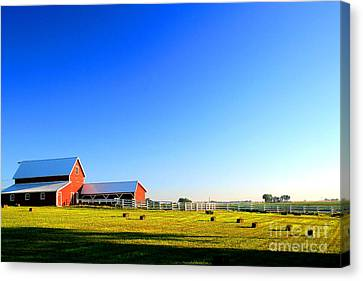 Morning At The Farm Canvas Print by Steven Reed