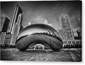 Morning Bean In Black And White Canvas Print by Sebastian Musial